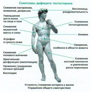 Симптомы-дефицита-тестостерона