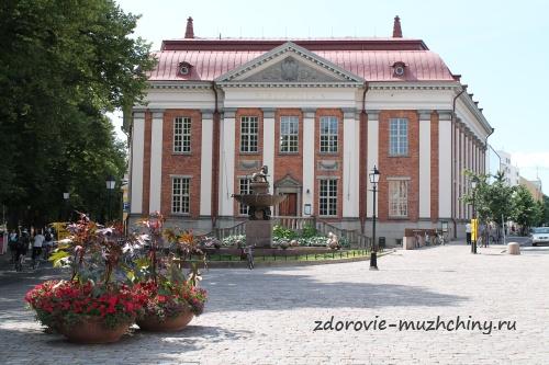 Библиотека Турку