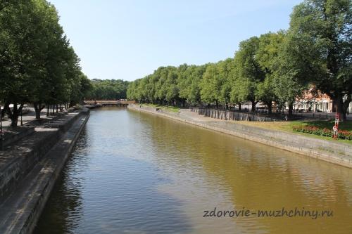 Река Аура