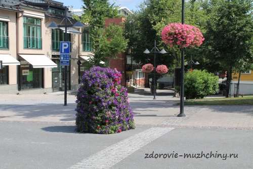 Цветы на улицах Лаппееранты